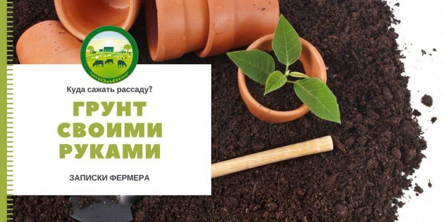 Грунты и субстраты для выращивания рассады