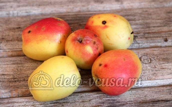 Шарлотка с яблоками в мультиварке яблочная