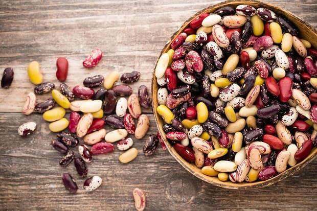 Белая фасоль польза: состав, калорийность, вред, применение и обзор лучших рецептов