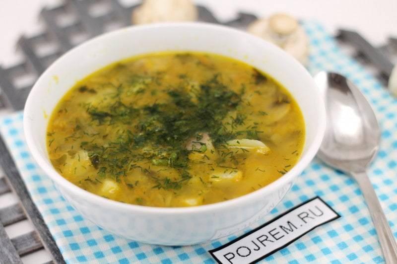 Грибной суп из шампиньонов — 5 простых рецептов вкусного грибного супа
