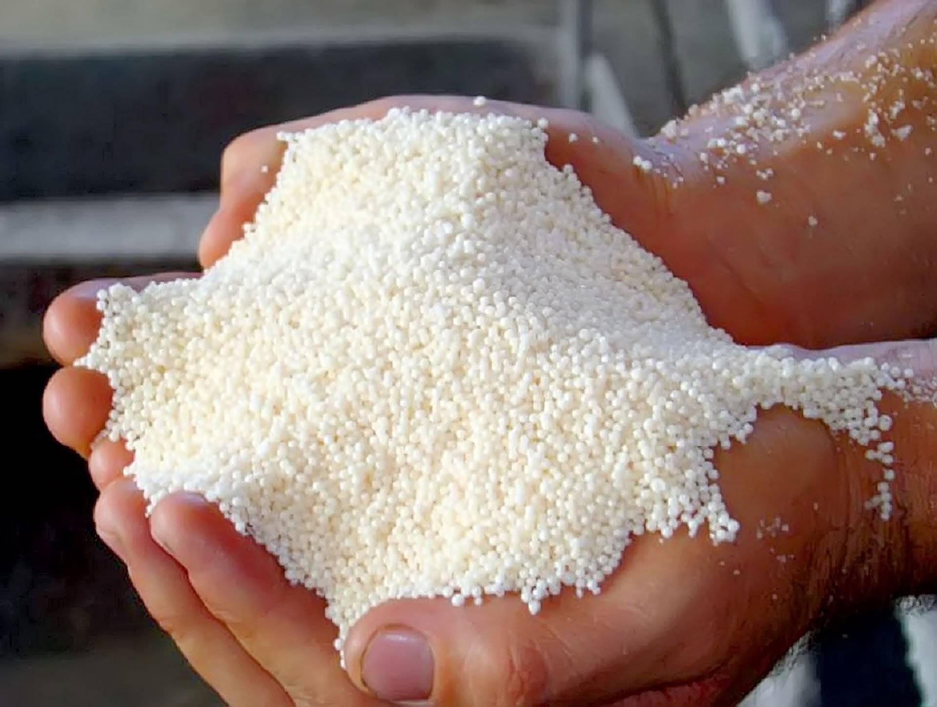 Аммиачная селитра или нитрат аммония: состав, свойства удобрения, применение в садоводстве и на огороде