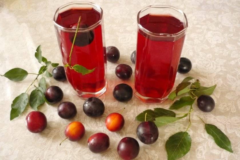 Вино из сливы в домашних условиях: не умеешь — научим! особенности приготовления настоящего вина из сливы в домашних условиях