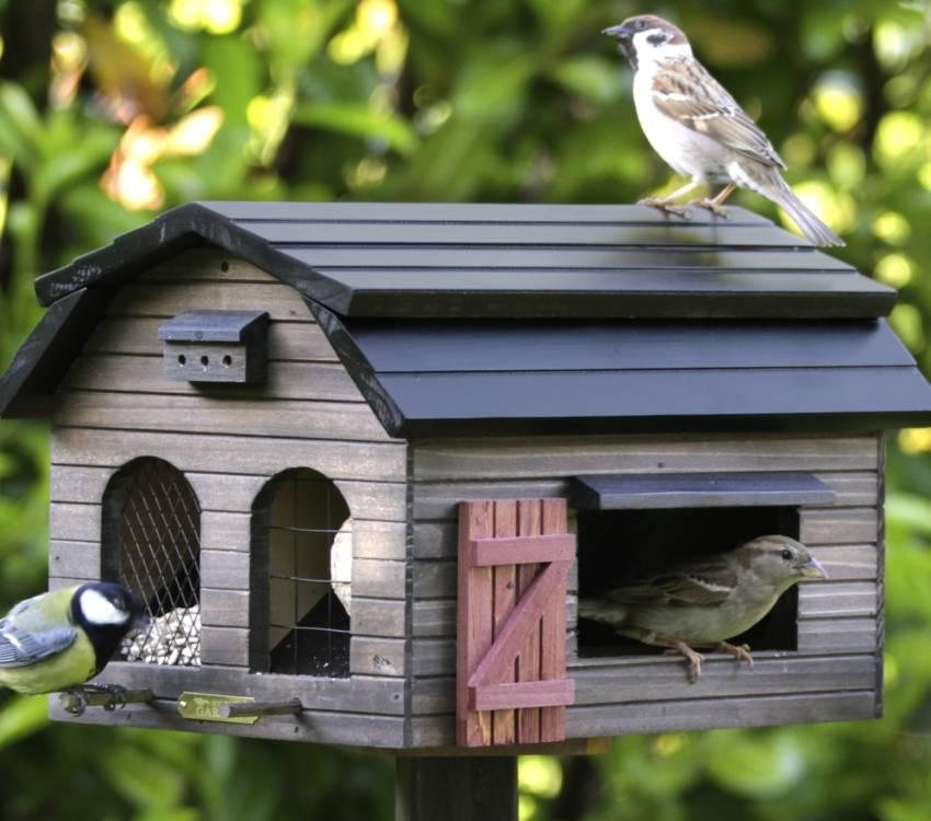 Кормушка для птиц из коробок от молока, + 150 фото, схемы