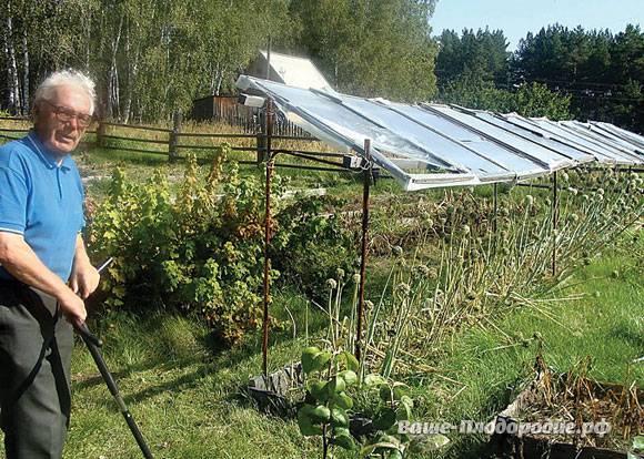 Николай курдюмов: умный огород