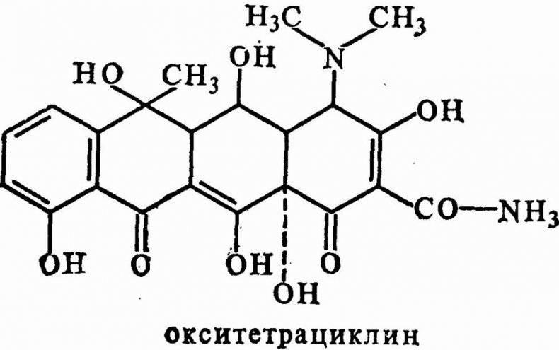 Антибиотик байтрил: инструкция по применению с подробным описанием