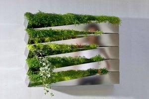 Стены из мха. озеленение дома: живые стены и композиции из мхов как сделать надпись из мха