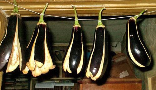 Как хранить сушеные баклажаны в домашних условиях?