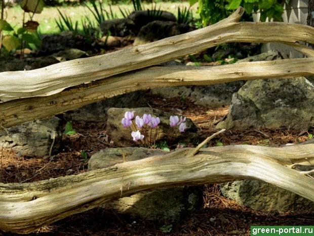 Композиции из коряг своими руками. полезные мелочи для дачи своими руками (59 фото): ландшафтные работы, облагораживание сада и зоны отдыха