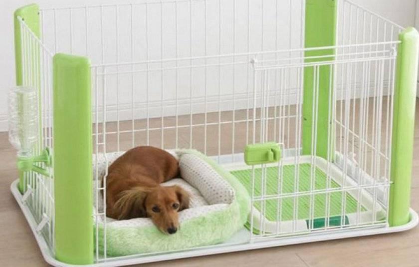 Самодельный квартирный вольер для собаки: из чего и как сделать