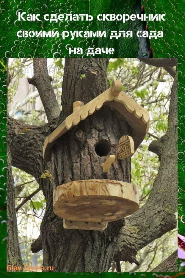 Как сделать скворечник своими руками из дерева и подручных материалов