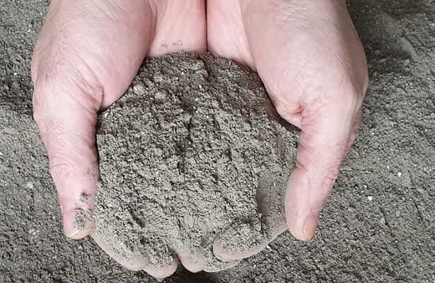 Угольная зола как удобрение – правила использования, нормы и способы приготовления подкормок для растений