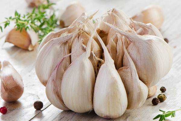 Польза и вред чеснока для организма человека— чесночные рецепты