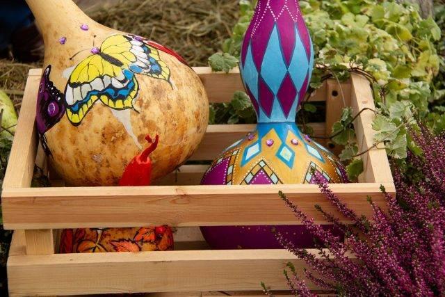Поделки из семечек — пошаговая инструкция как сделать классные поделки из семян (125 фото)