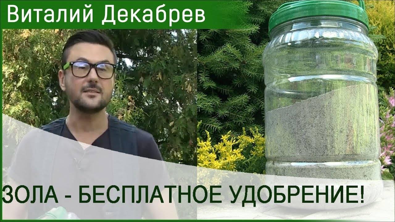 Не навреди: какие растения нельзя подкармливать золой