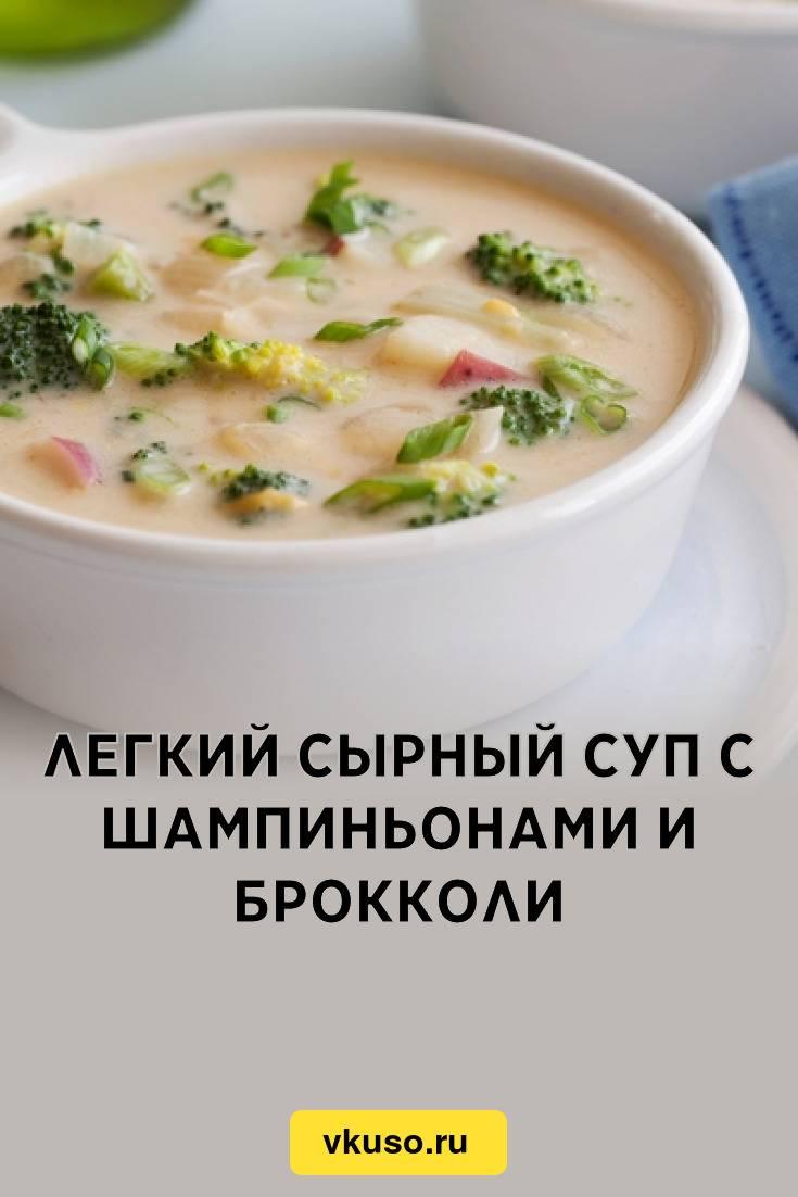Сырный суп из плавленного сыра — 11 простых рецептов нежного сливочного супа с вкусными добавками