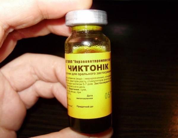Препарат чиктоник — обогащение организма витаминами и аминокислотами!