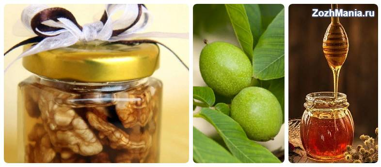 Чем полезен грецкий орех с медом для мужчин и какие рецепты самые эффективные?