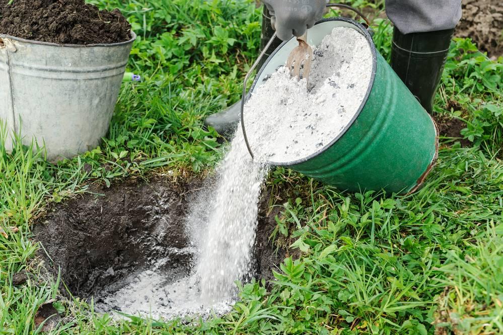 Минеральные удобрения: виды, правила внесения
