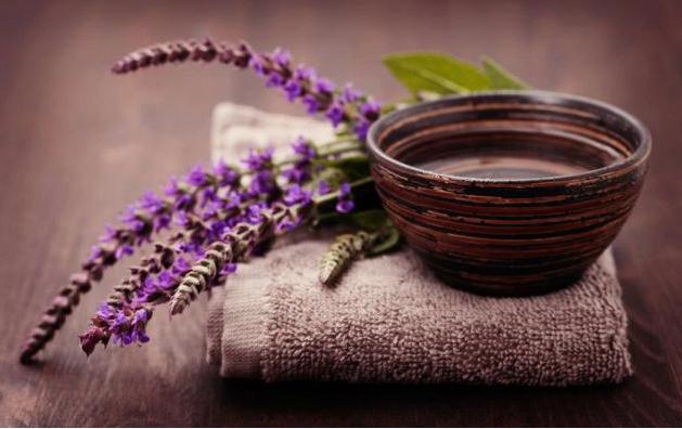 Настойка шалфея: от чего помогает, как приготовить и принимать