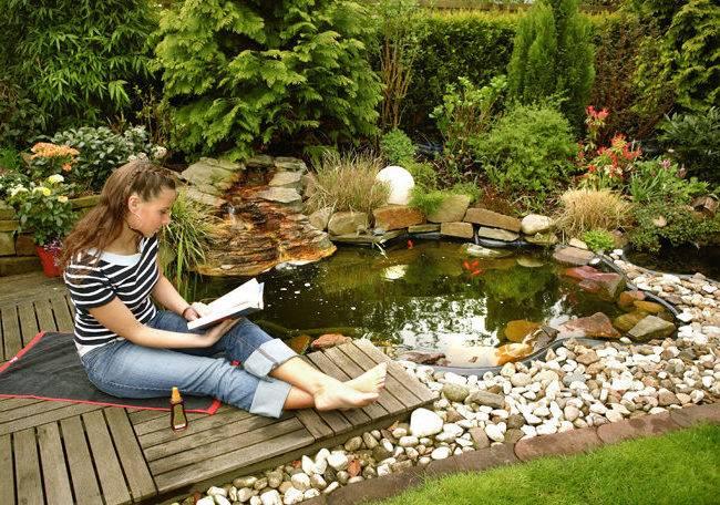 Как сделать декоративный пруд на даче своими руками: ландшафтные идеи
