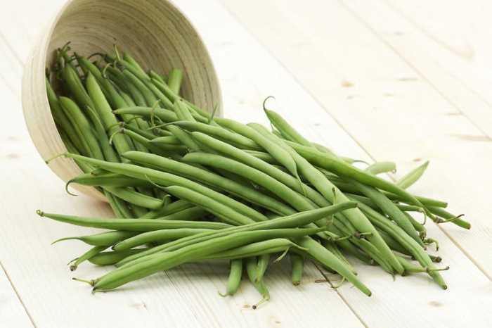 Спаржевая фасоль — особенности уборки урожая