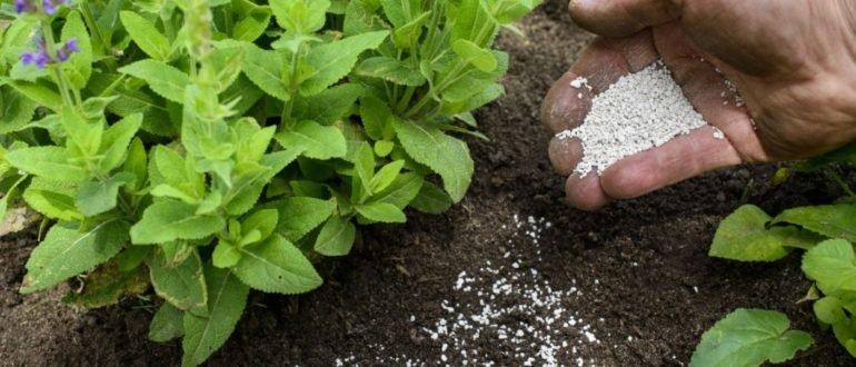 Эффективное использование удобрения суперфосфат