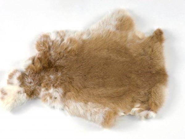 Как производится выделка шкур кроликов в домашних условиях