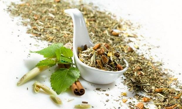 Мята перечная и мелисса вместо чая: польза или вред?