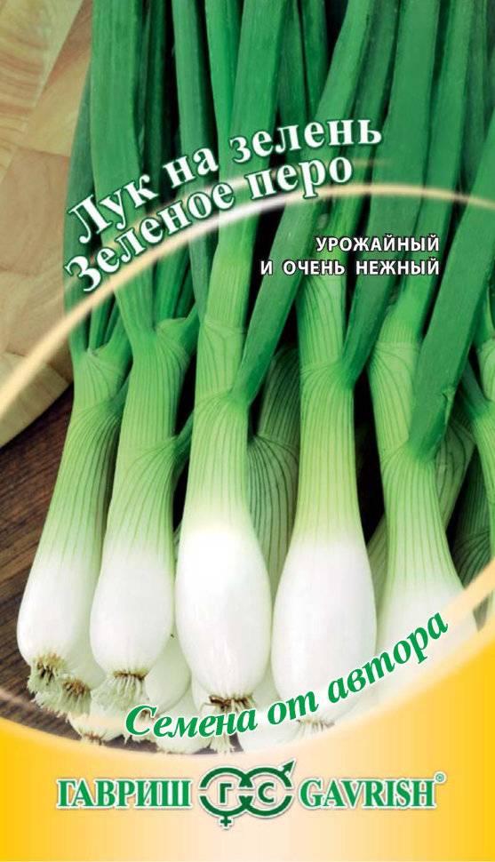 Китайский способ выращивания лука