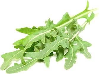 Руккола салат польза для женщин