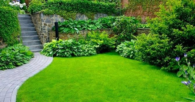 Стрижка газонов с весны до осени: основные правила и секреты
