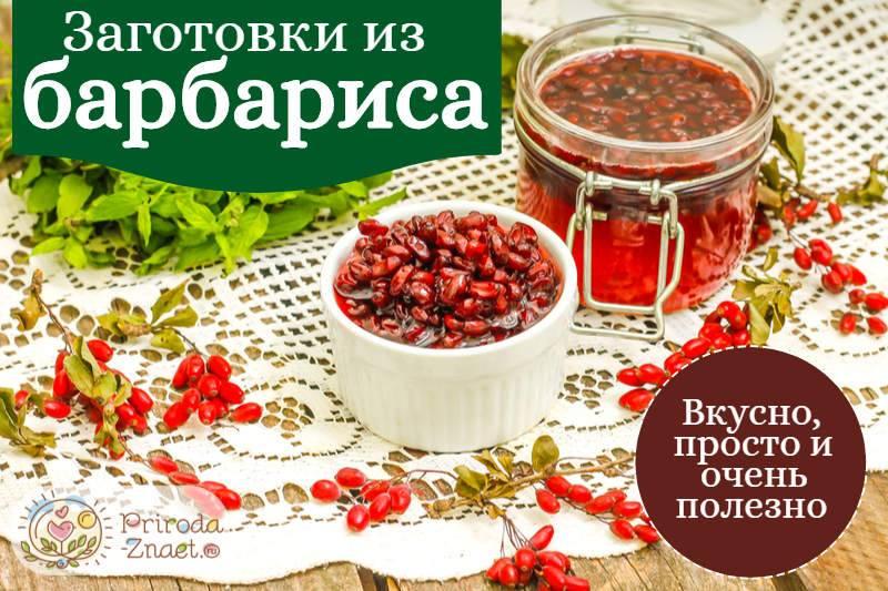 Разнообразные рецепты заготовок из барбариса на зиму