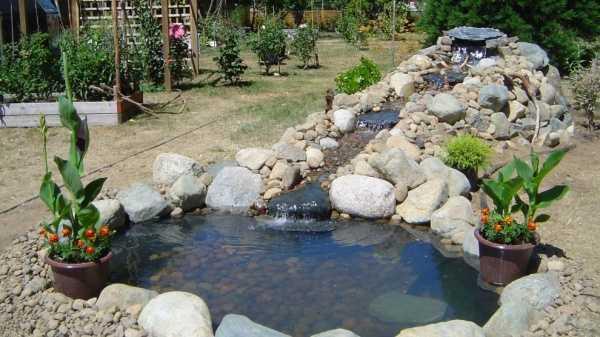 Создаем на дачном участке пруд для разведения рыбы