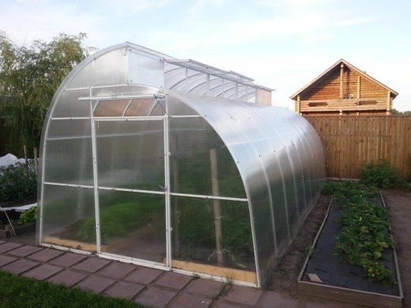 Устанавливаем теплицу на крыше или чердаке дома. как сделать сад на крыше: инверсионная кровля зимний сад на крыше гаража своими руками