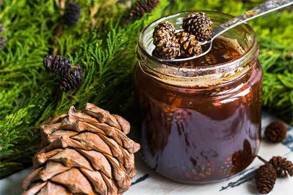 Варенье из сосновых шишек: польза и противопоказания, пошаговый рецепт
