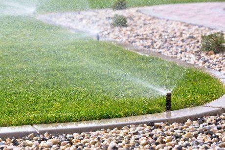 Хитрости посадки газона жарким летом: как обеспечить всхожесть травы в сухой период?