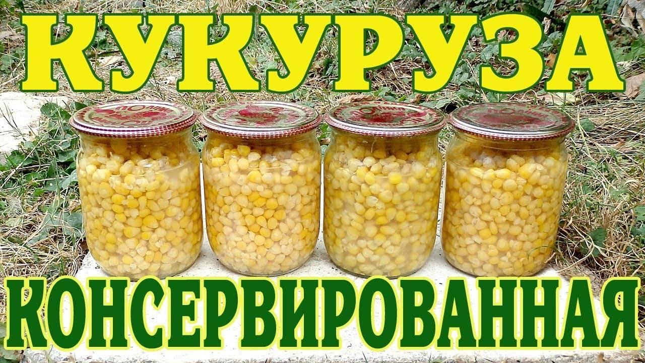 Консервируем кукурузу дома: заготовка, которая точно пригодится