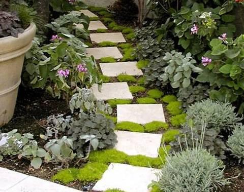 Этапы планировки участка за городом. шаг 4 – проектируем садовые дорожки