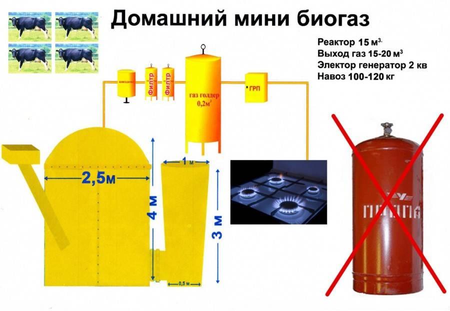Биогазовая установка – простые идеи для частного дома. чертежи, схемы и проекты лучших установок. все за и против установки в домашних условиях