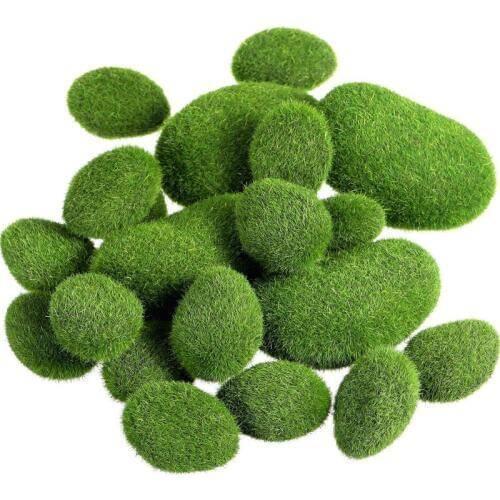 Сад мхов: секреты создания декоративных зеленых шедевров на своей даче