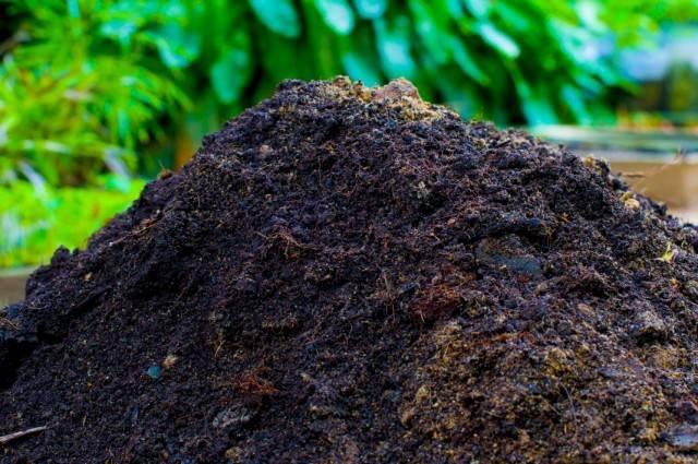 Классификация и способы применения удобрений