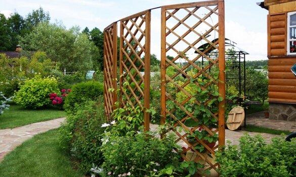 Сборка шпалеры для вьющихся растений на приусадебном участке