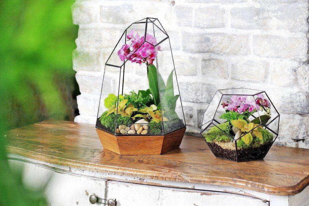 Прелестные цветы в бутылке для колоритного интерьера
