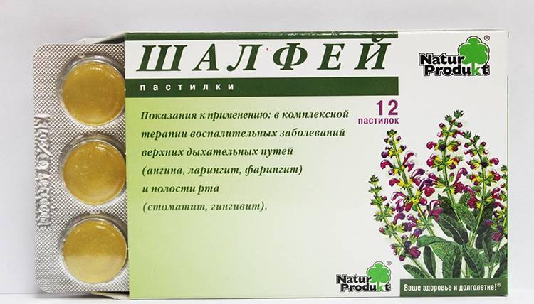 Шалфей: лечебные свойства и противопоказания. народные рецепты из шалфея