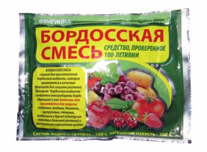 Фунгициды для обработки растений: препараты, инструкции по применению