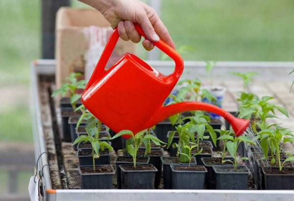 Инструкция по применению таблеток гамаир для разных растений