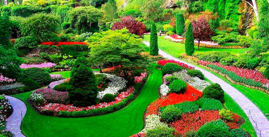 Как оформить сад: пошаговая инструкция для начинающих. 130 фото и видео советы от экспертов