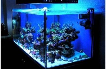 Как сделать led подсветку для аквариума своими руками