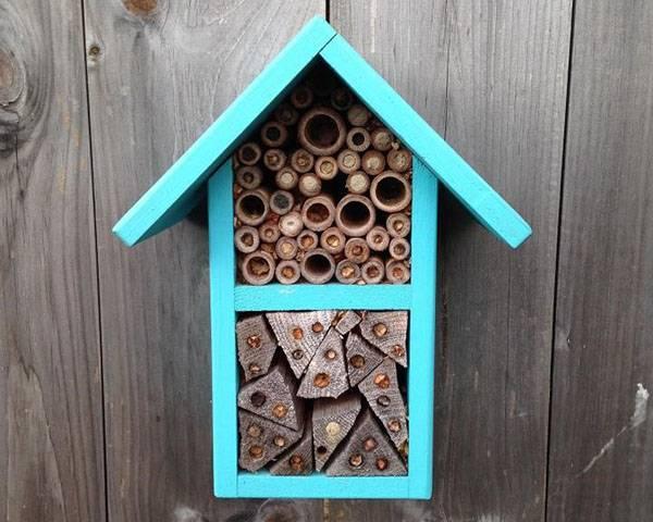 Строим дом для одиночных пчел
