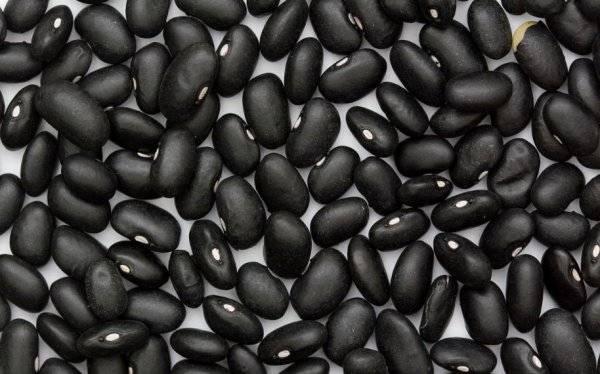 Бобы - рецепты приготовления, особенности и рекомендации. заготовка семян черных бобов